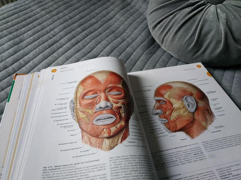 Książka o anatomii - mięśnie twarzy